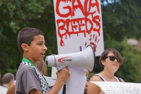 Pro-Palestinian protesters held signs decrying Israel's offensive in the Gaza Strip in front of the state Capitol on Wednesday.