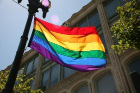 Pluta says Michigan's case is unique as it directly challenges the State of Michigan's ban on gay marriage rather than approach the issue obliquely.