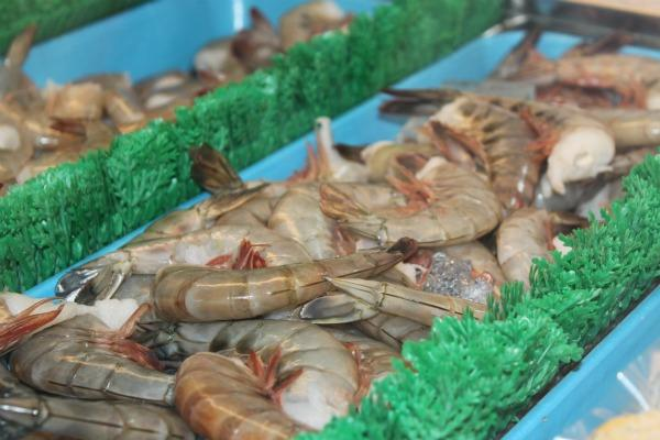 Shrimp harvested in Meridian township.  Michigan aquaculturists want to expand in the state. photo: T.W. Zeko/WKAR
