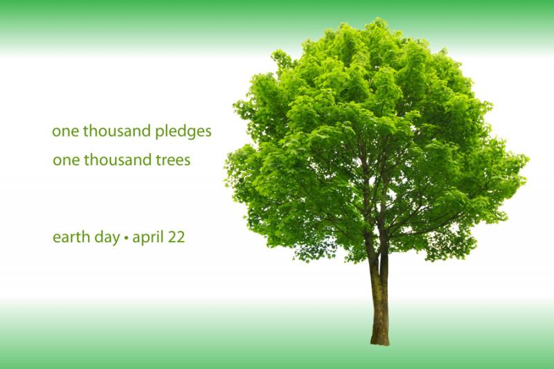 one thousand pledges, one thousand trees