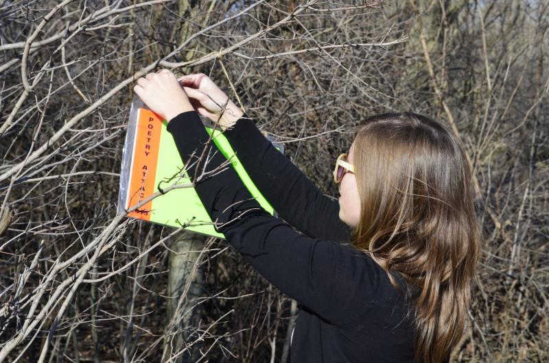 Emily Davis hangs a poem in Harrison Medows Park