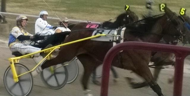 Hazel Park Raceway first opened as a horse track in 1949. This season's harness races run through Saturday.