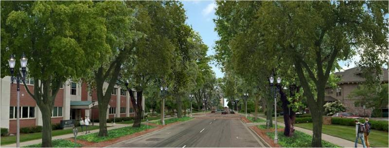LCC is planning to remove telephone poles and plant trees along Capitol Avenue.
