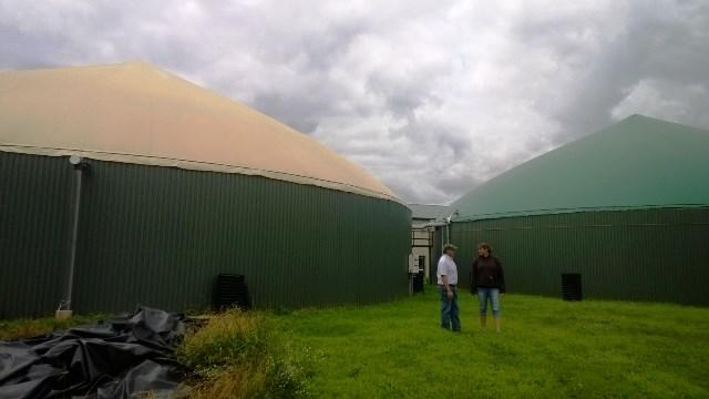 Before treatment, the farm stores three million gallons of manure in large tanks.