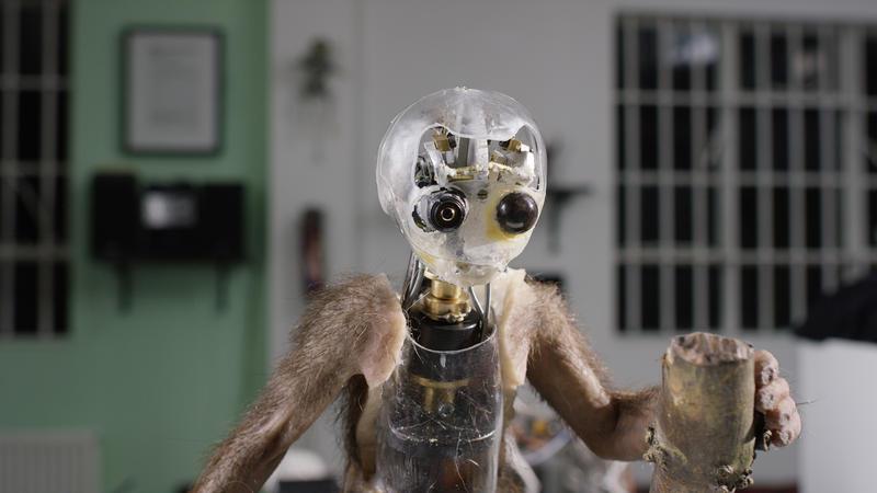 Spy in the Wild - monkey robort