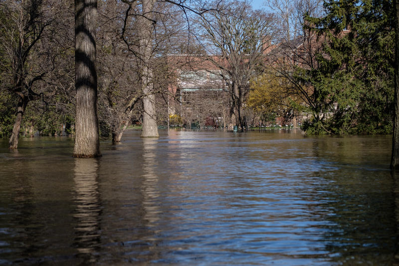 On most days this pathway and lawn near the W.J. Beal Botanical Garden on the MSU campus is a lovely place to walk and relax, but remain closed as flood waters from the Red Cedar river reach 8.4 feet on April 8, 2017. Flood stage is 7.0 feet.