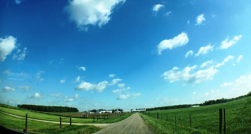 MSU beef center pastures