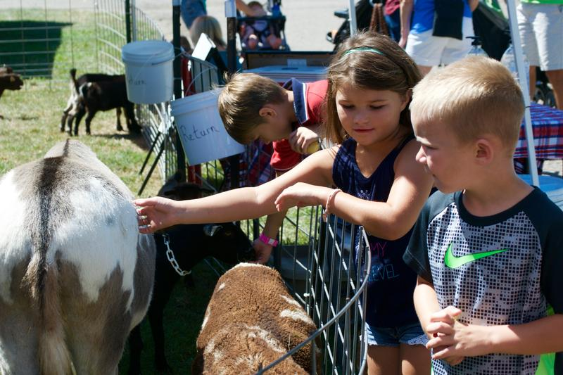 Children petting and feeding the donkey at Miller's Petting Zoo.