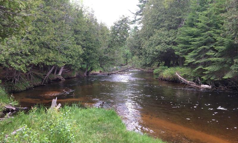 Maple River