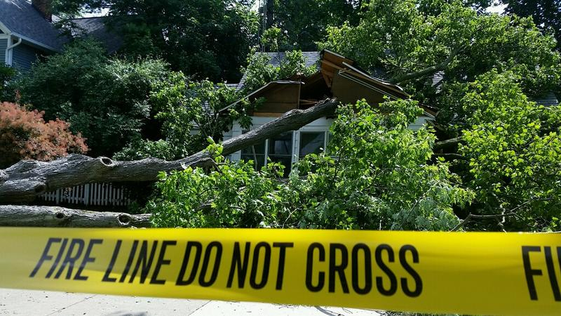 High winds blew a tree on top of a home in Charlotte.