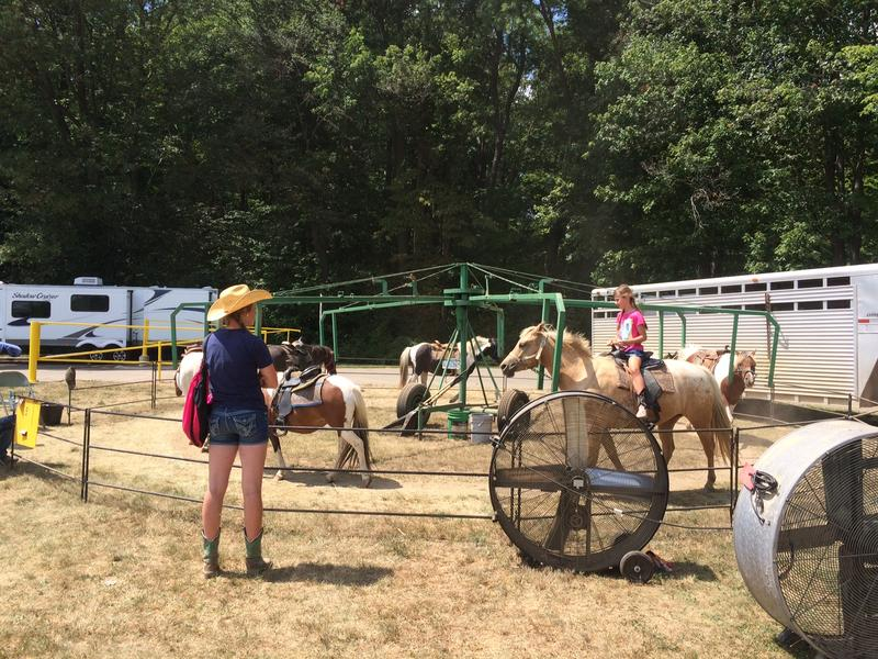 Pony rides at the Clinton County Fair.