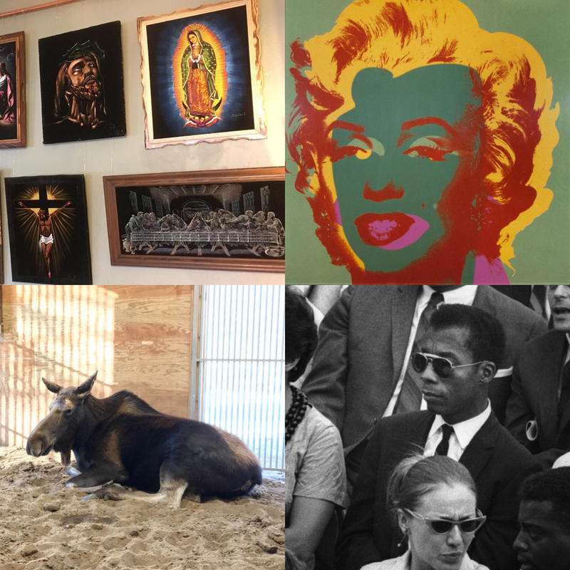 "Clockwise from top left: Velvet art on display at Casa de Rosado;  Andy Warhol, Marilyn, 1967; James Baldwin is the subject of the documentary ""I Am Not Your Negro""; A female moose resting at Potter Park Zoo in Lansing"