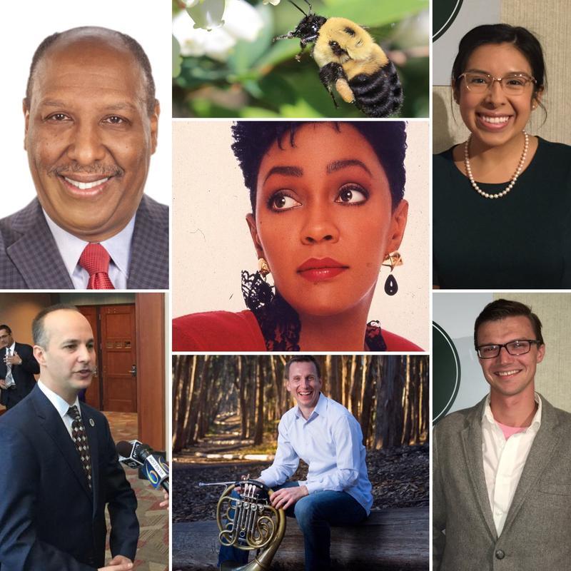 Top left: Chuck Stokes, WXYZ-TV; Top center: bee, Top right: State Rep. Vanessa Guerra, Center: Anita Baker, Lower left: Lansing mayor Andy Schor, Lower center: David Cooper, Lower right: Jackson mayor Derek Dobies