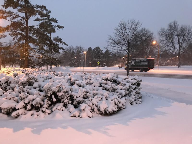 Snowfall MSU