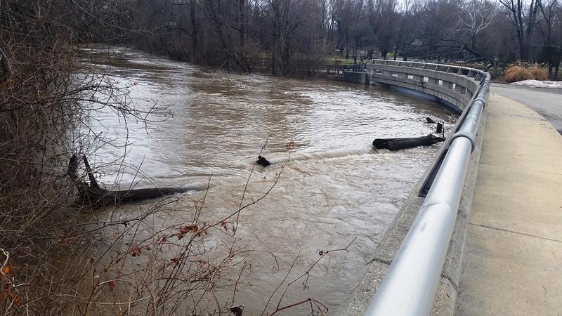bridge and flood