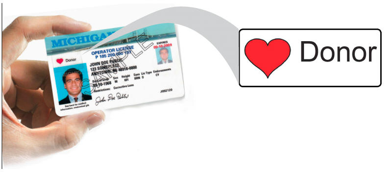 driver's license with organ donor sticker image