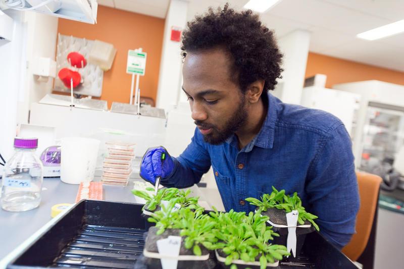 MSU student researcher