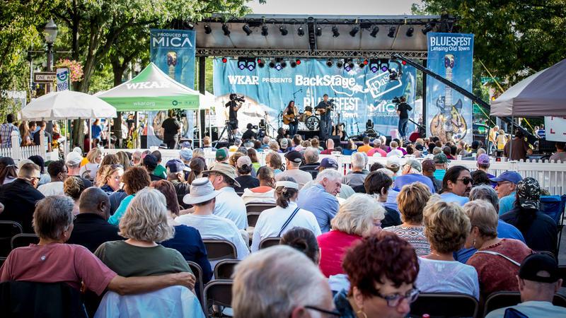 Michigan BluesFest