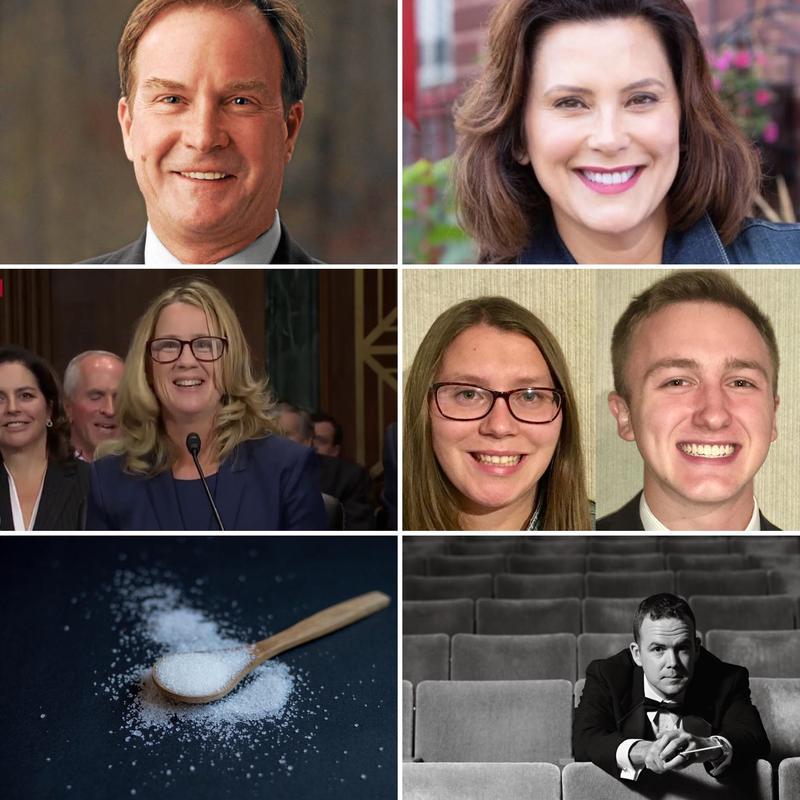 top row: Bill Schuette (left), Gretchen Whitmer (right); second row: Dr. Christine Blasey Ford (left), Jenna Chapman (center), Adam Green (right); bottom right: Dr. Matthew Aubin
