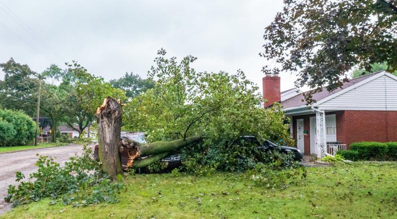 Jackson tornado damage.