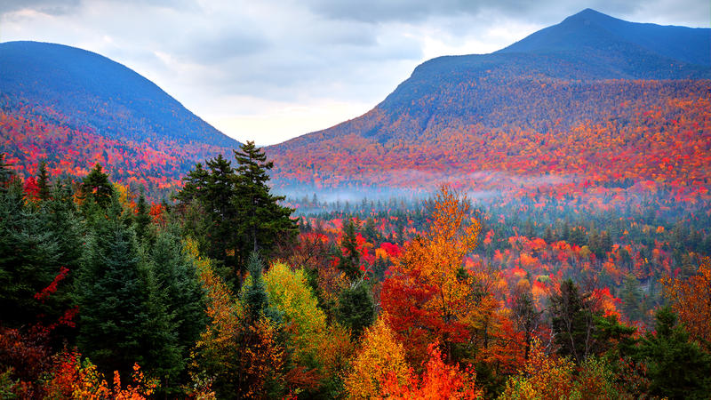 Fall foliage in White Mountains National Park, New Hampshire.