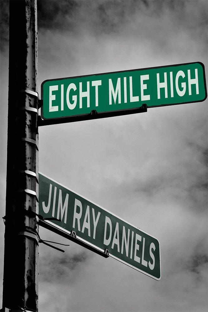Eight Mile High book cover