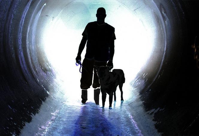 Environmental Canine Services logo