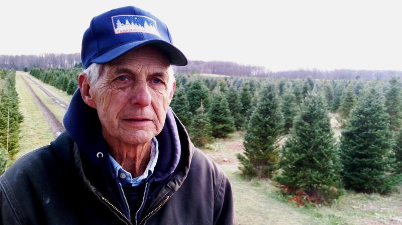 Mel Koelling Tannenbaum Farms photo