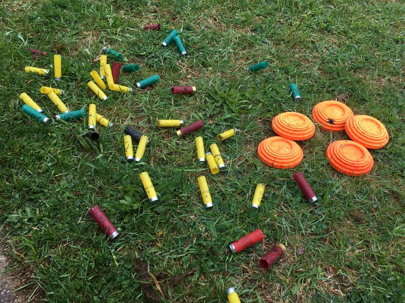 Empty shells and clay targets photo