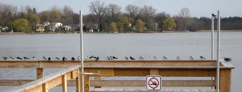 Park Lake photo