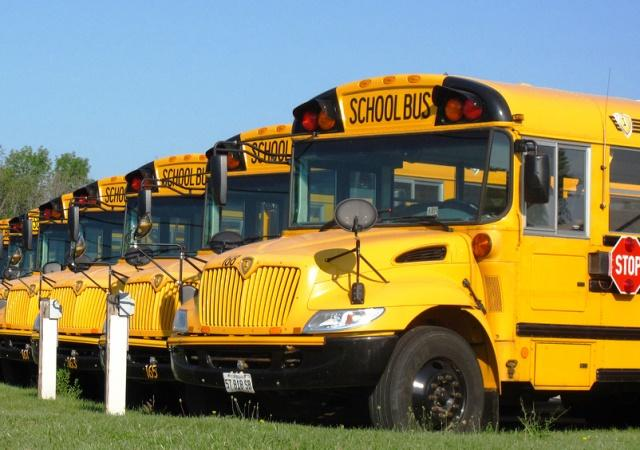 school buses photo
