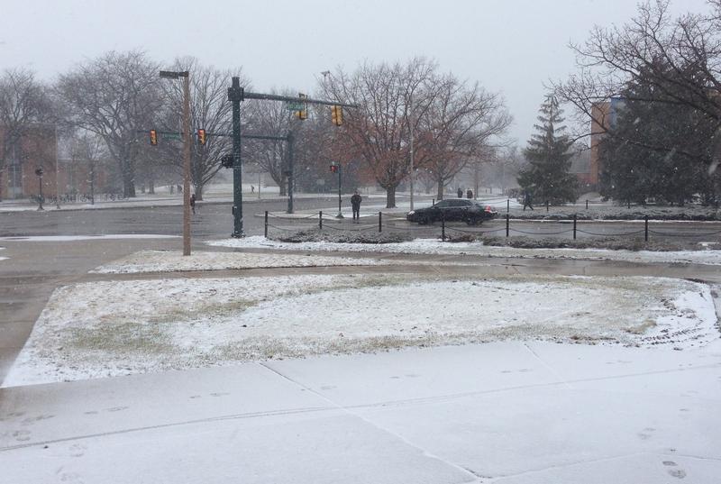 Snowfall at MSU photo