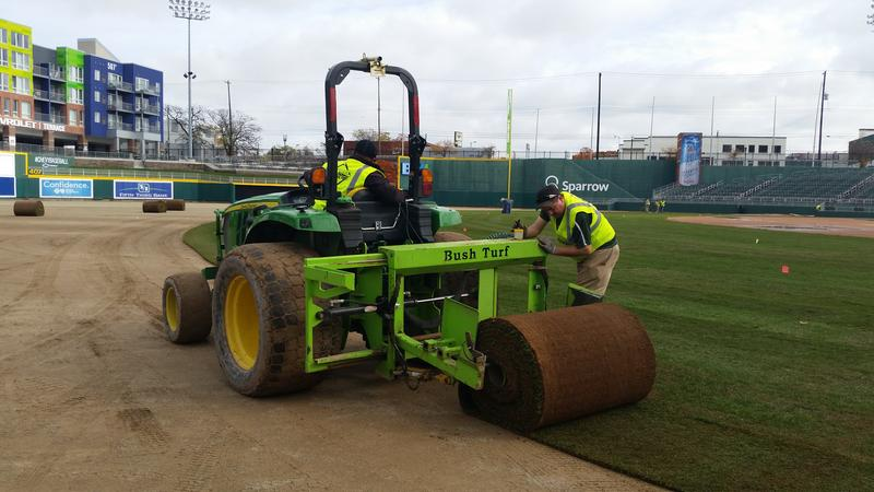 New sod at Cooley Law School Stadium photo