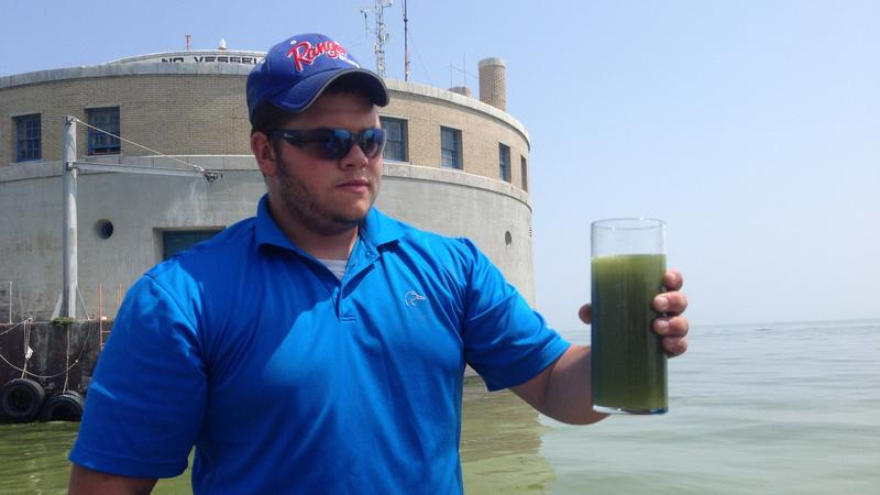 Lake Erie algae photo