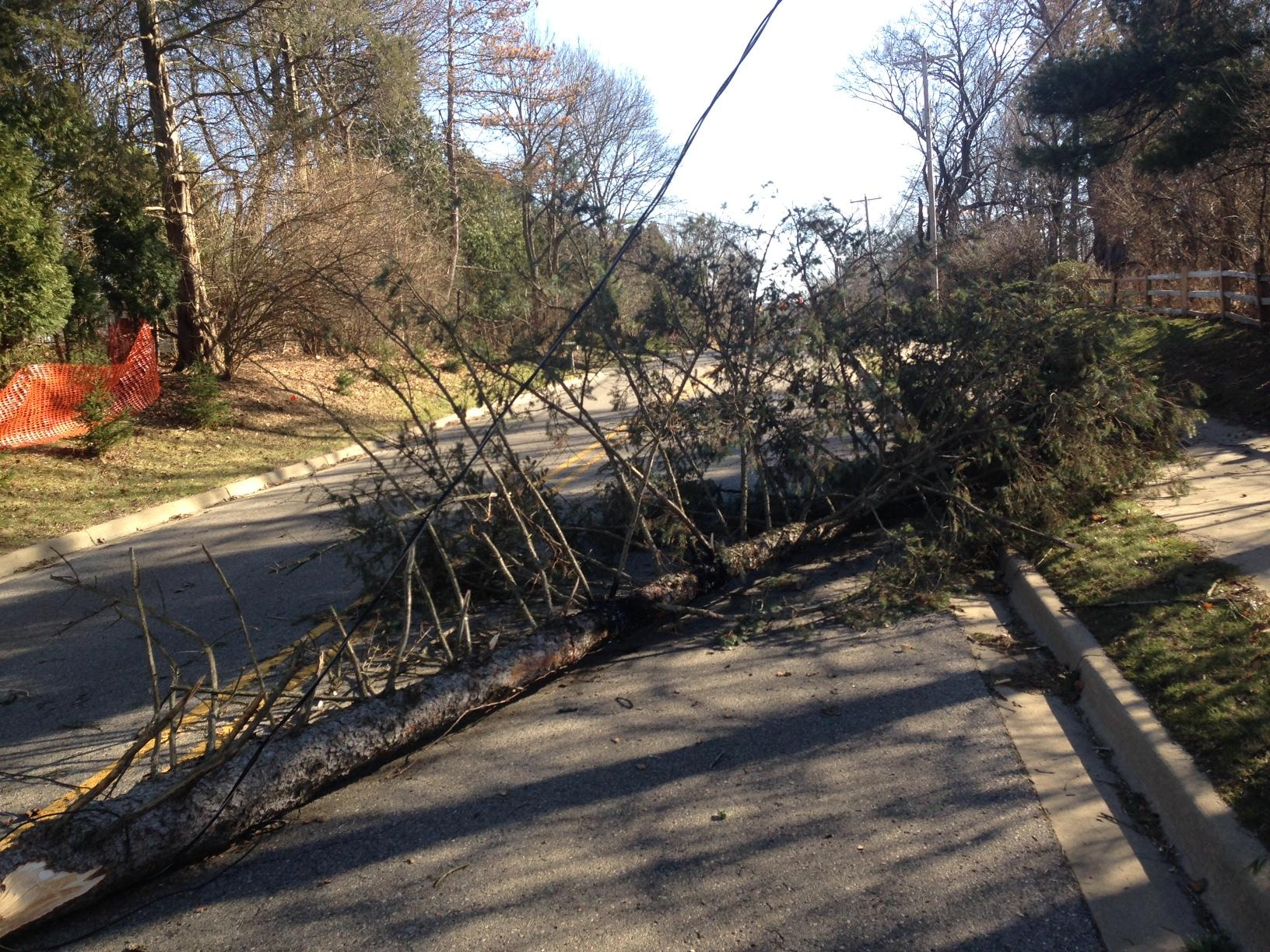 High winds wreak havoc in the Midwest, Northeast