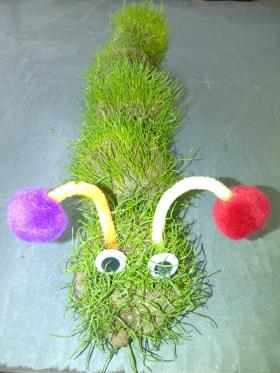 A Very Hairy Caterpillar by Little Sprouts at Beans to Blossoms