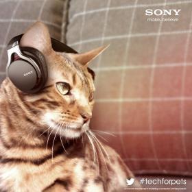 Sony's 2013 April Fools' Day Joke?