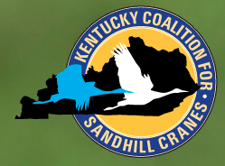 Kentucky 39 s first ever crane hunt wkms for Kentucky fish and wildlife jobs
