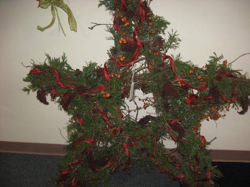 Winter Star by Tammie Sanders, Princeton, 1st Place Winner