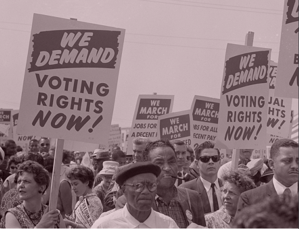 Black Voting Rights 107