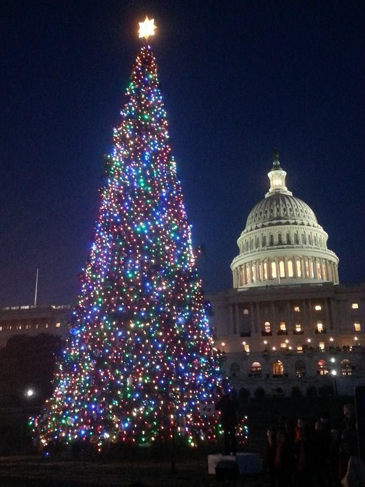 Dc Christmas Tree Part - 40: D.C.u0027s Christmas Tree Makes 2-Day Stop In Paducahu0027s Noble Park Next Week