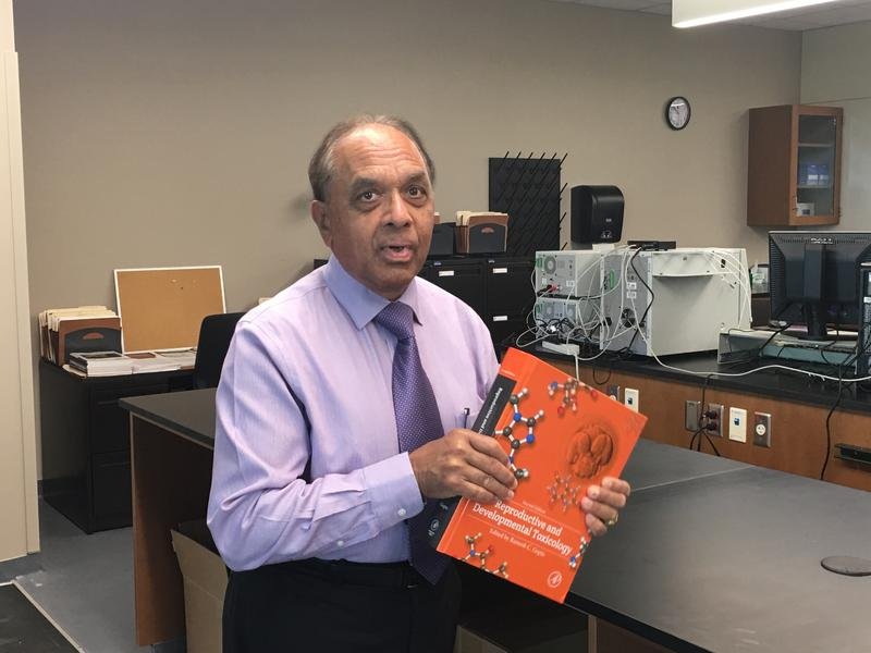 Dr. Ramesh Gupta describes his newly published book