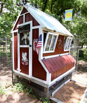 Mark Henderson built this coop with stained glass windows, solar powered cooling and automatic doors that open during the day and keep predators out at night.