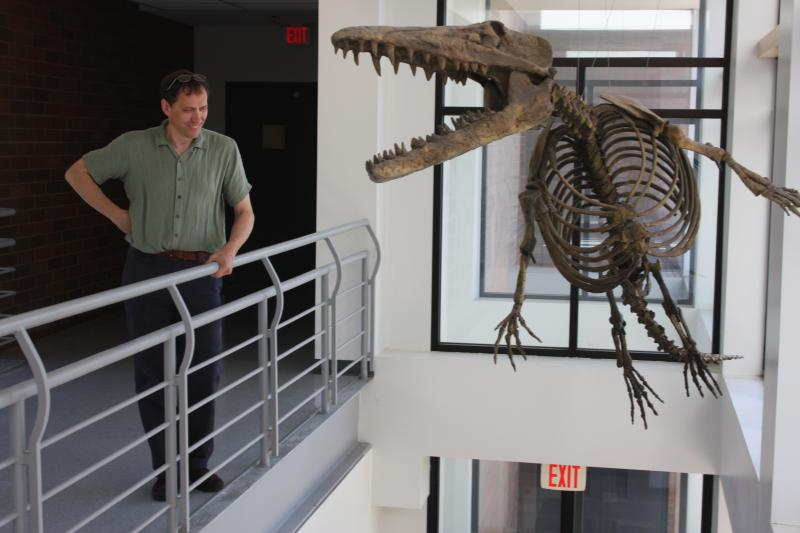 Hans Thewissen discovered the fossils of Ambulocetus in 1993 in a remote site in western India. The 'walking whale' is the mascot of the Northeast Medical University where Thewissen teaches anatomy.