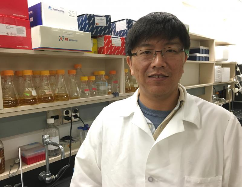 Hui Li is a researcher in the Bao lab at NEOMED. He was awarded an Ohio Third Frontier grant to develop a toolbox of viruses that can deliver DNA to targeted cell types.