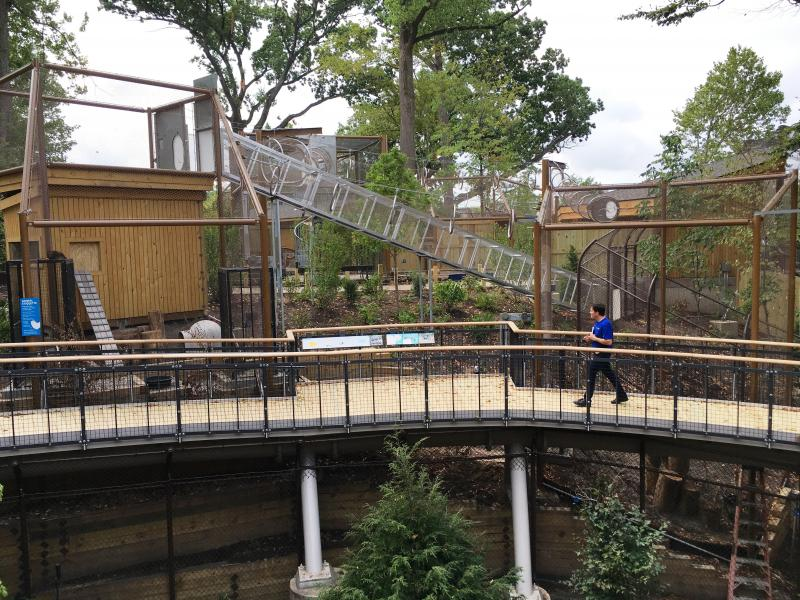 An elevated walkway curves around a hillside at the new Perkins Wildlife Garden at CMNH.  The walkway provides unobstructed views of the animal enclosures and a vista out into the Cleveland neighborhood.
