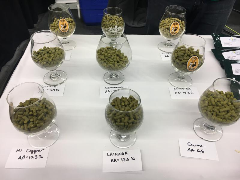 A picture of hops.