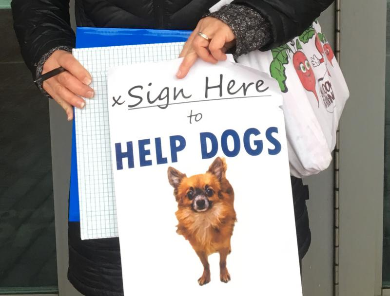 photo of puppy mill campaigner