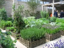 Urban gardens are growing in popularity in many U.S. cities.