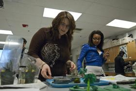 Educators nationwide have become concerned recently over the lack of girls in certain science-related classes and professions.